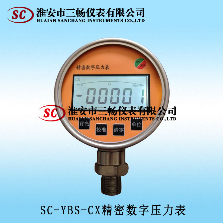 YBS-CX精密数字压力表